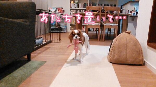 fc2_2013-12-02_23-33-52-786.jpg