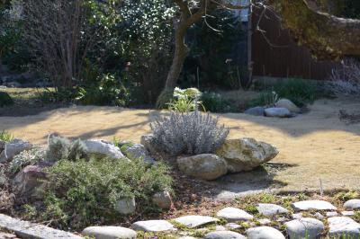Garden-1_20130311.jpg