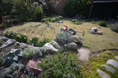 Garden-3-2_20130412.jpg
