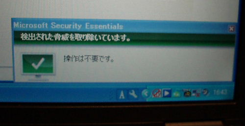 P5030002.jpg