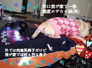 fc2_2013-12-26_21-35-04-915.jpg
