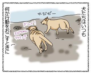 羊の国のラブラドール絵日記、申請と許可と報告1