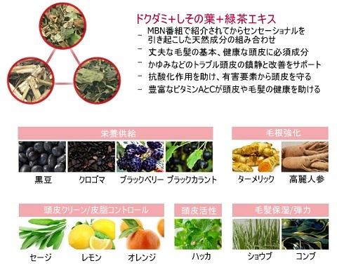 ISOI_アイソイ_頭皮ケア_ドクタールーツ (3)