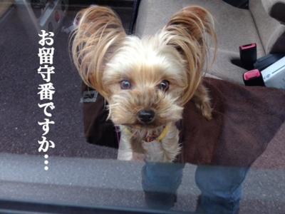 fc2blog_20131208222757eca.jpg