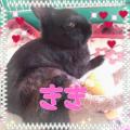 ☆きき&らら☆