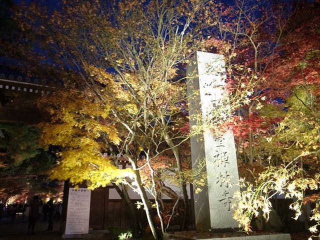 秋にお別れ!?今年最後の紅葉記事 永観堂ライトアップ 京都散歩