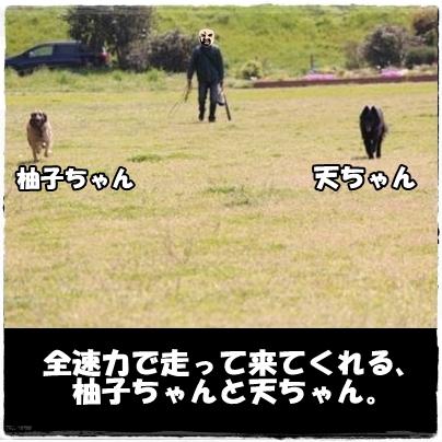2_20120419153501.jpg