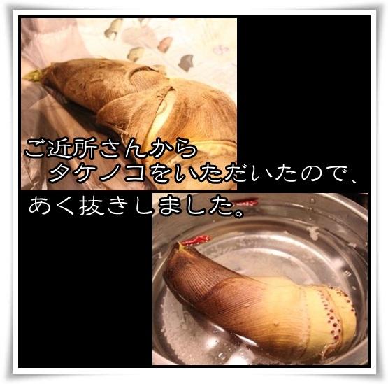 2_20120426153551.jpg