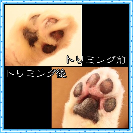 91_20120430073512.jpg