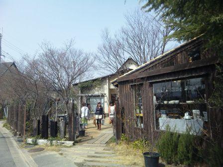 奈良の有名店へ行く ‐くるみの木‐