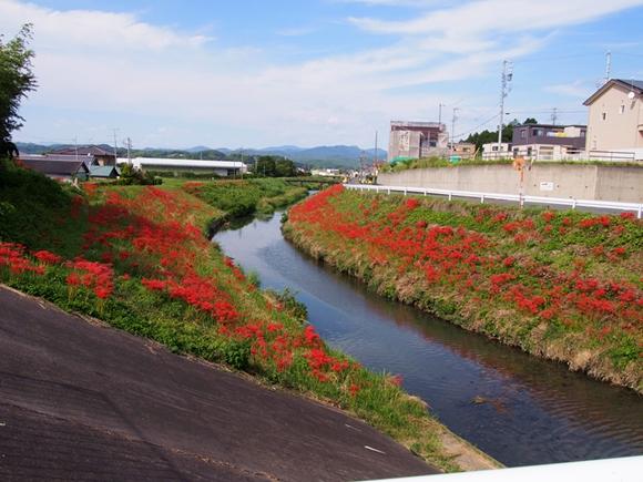 kakegawa-20140921-11s.jpg