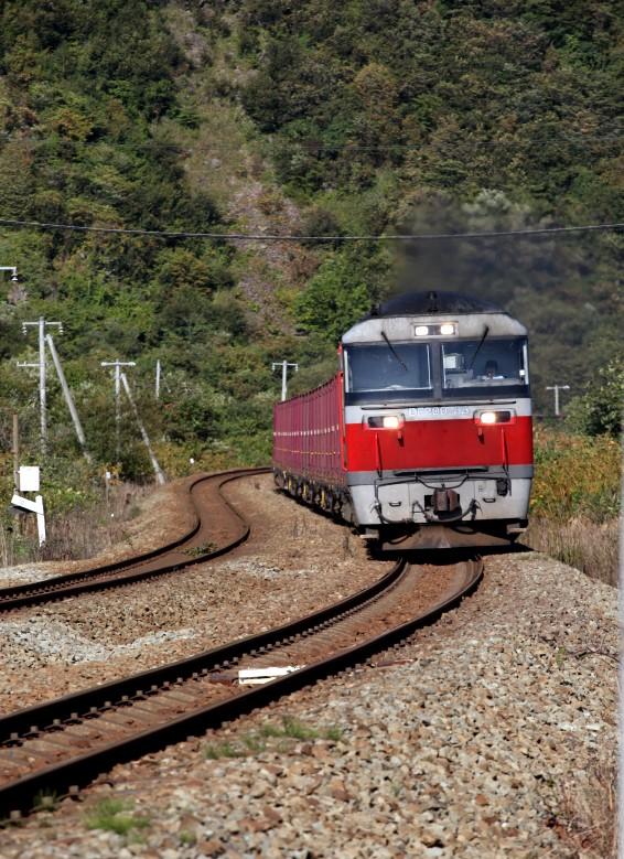 DF55IMG_9176-2.jpg