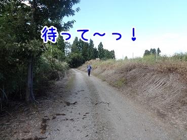 kinako965.jpg