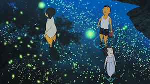 星のような蛍の群舞