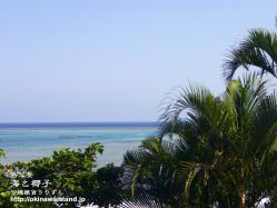 沖縄,壁紙,海,椰子