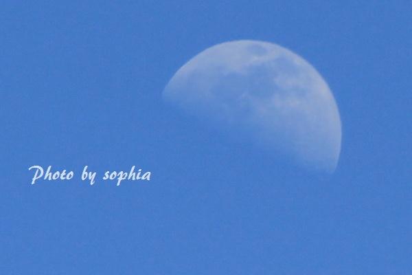 シースルーの月