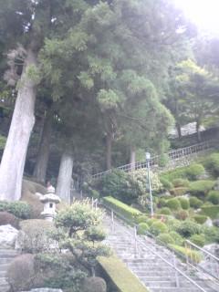 第27番 神峯寺(こうのみねじ)