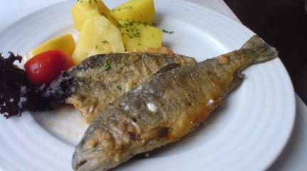 ハルシュタットで食べた魚料理は最高でした