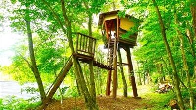 treehouse_R400.jpg