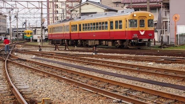 P1012195a.jpg