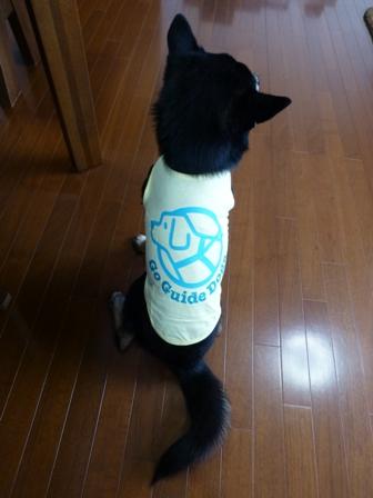 盲導犬サポートSHOP18