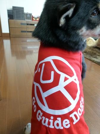 盲導犬サポートSHOP22