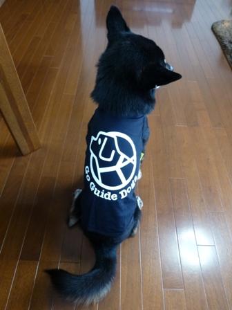 盲導犬サポートSHOP25