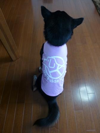 盲導犬サポートSHOP28