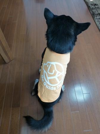 盲導犬サポートSHOP34