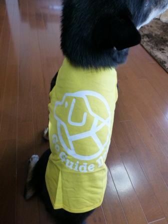 盲導犬サポートSHOP37
