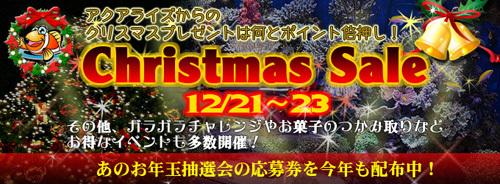 201312christmas_banner680-thumbnail2.jpg