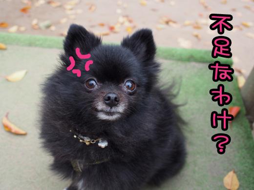 fusokunawake.jpg