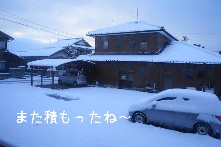 20130129213339dfa.jpg