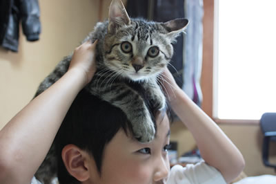 玉ニィの肩車